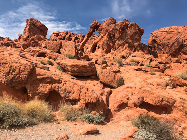 """The """"Elephant Rock"""" in the Valley of Fire State Park in Nevada."""