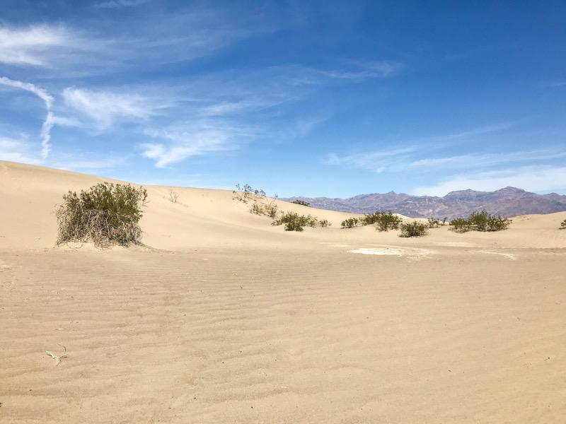 The Mesquite Flats sand dunes