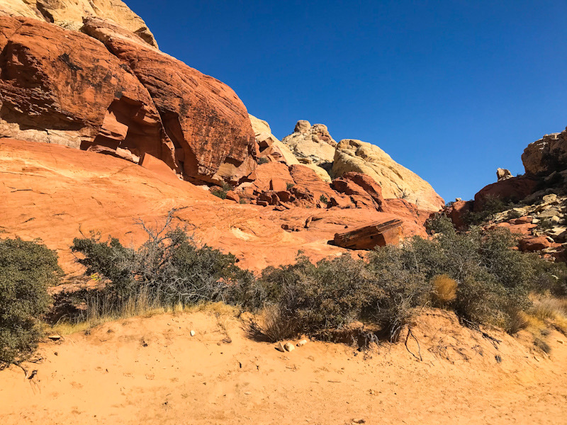 On the Calico Tanks Trail in Red Rock Canyon